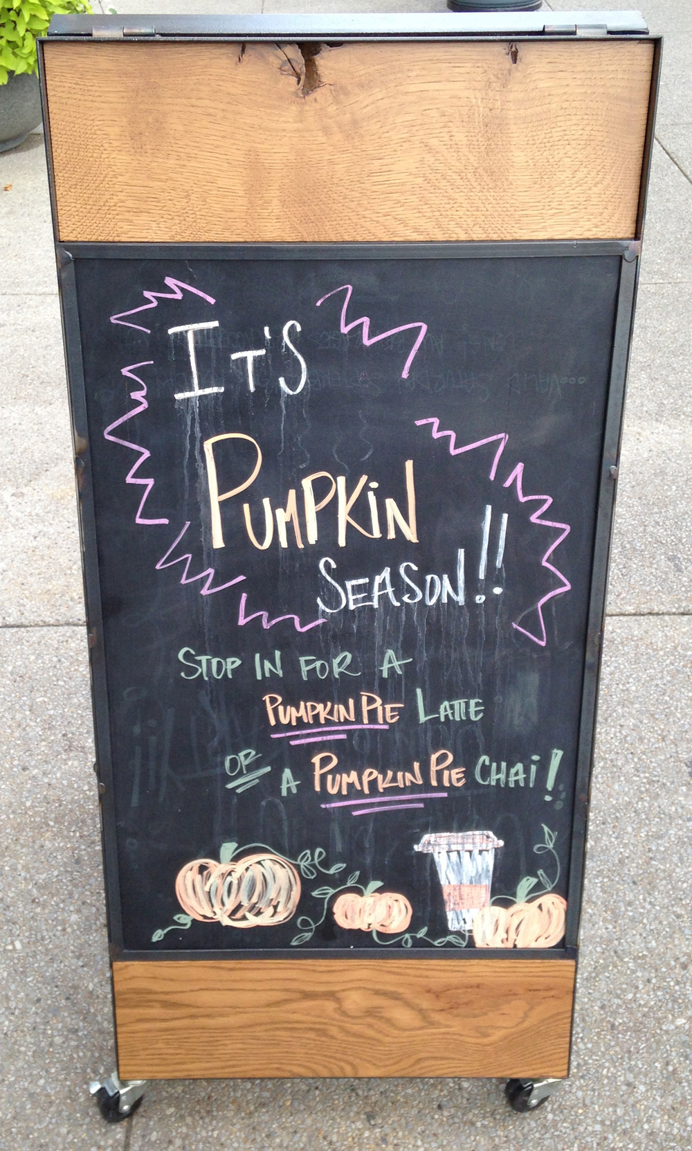 Peet's presents pumpkin season