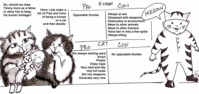 comics_curiouscats