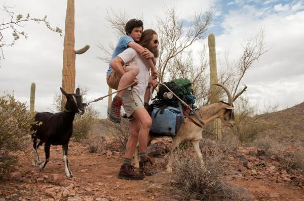 1147176_Goats