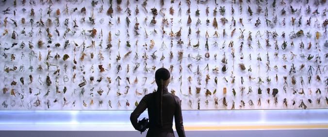 """El Fin del Mundo"" Moon Kyungwon and Jeon Joonho, El Fin del Mundo, 2012, film still. Courtesy of the artists and Gallery Hyundai, Seoul."