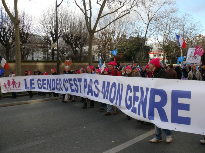 """Members of La Manif pour Tous marching the streets of Paris, February 2. The sign reads """"Gender is not my kind of thing."""""""