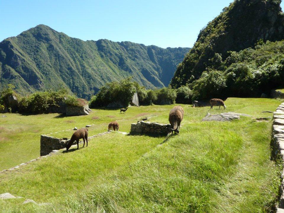 Peru, by Grant Hayne