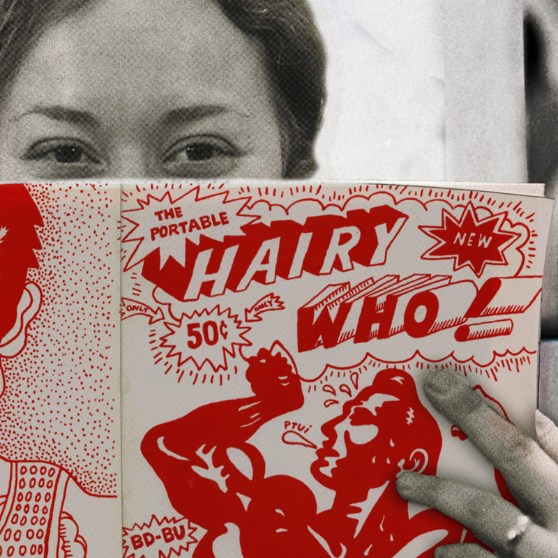 A Hairy Who exclusive comic book. Image courtesy of Gene Siskel Film Center.