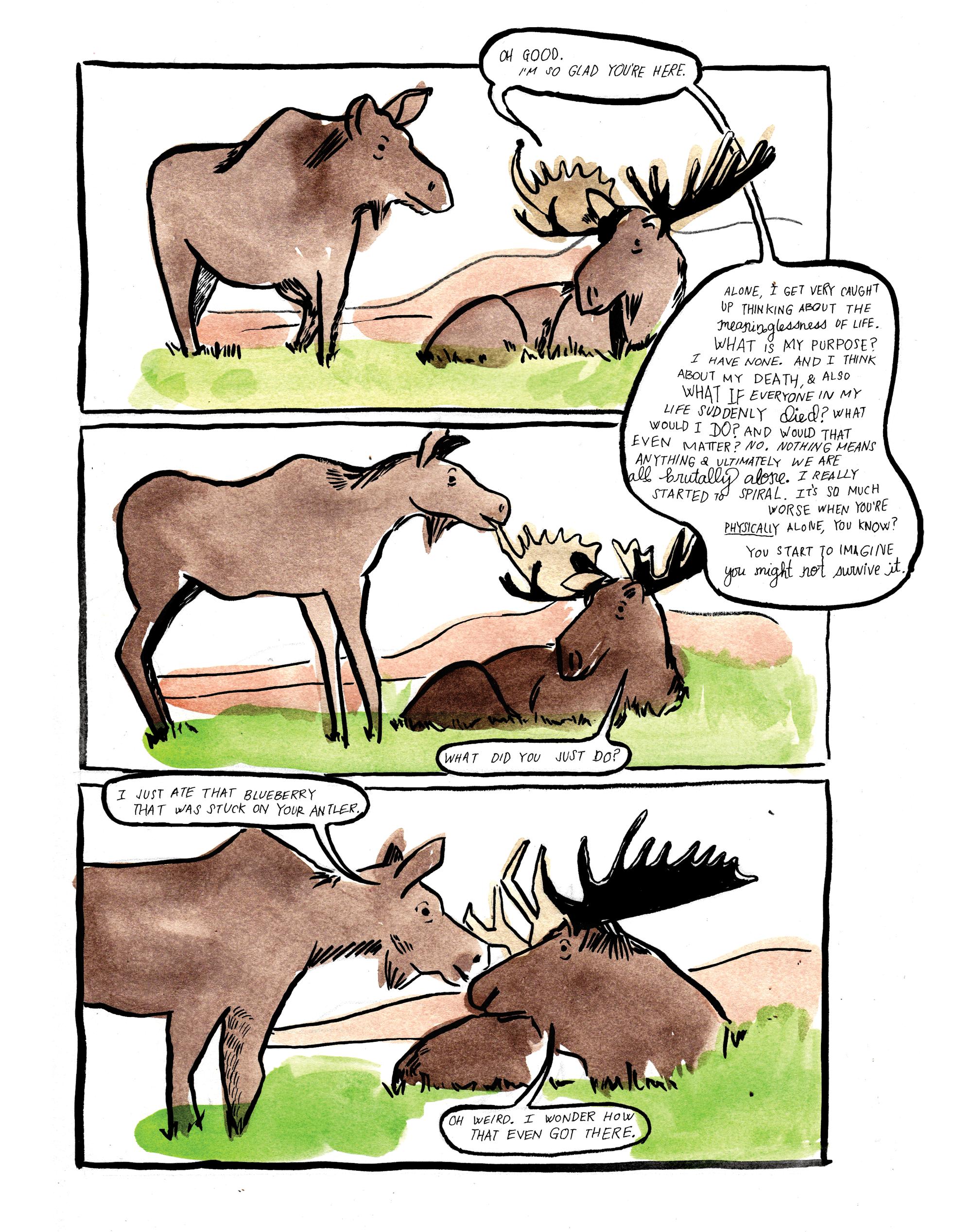 2moose2