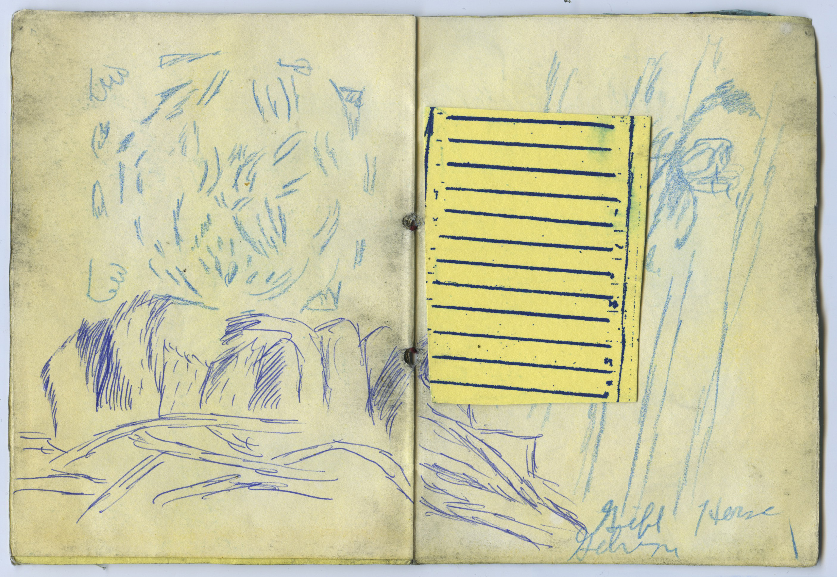 Sketchbook pages from the author's notebook. Abstract organic shapes in blue ballpoint pen, and a scrap of lined yellow paper.